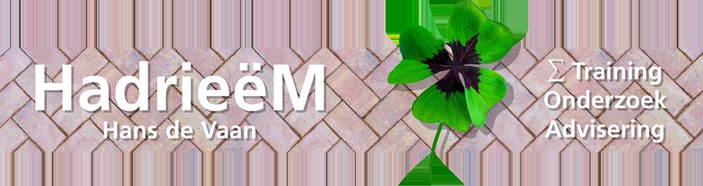 HadrieëM ∑ Training - Onderzoek - Advisering